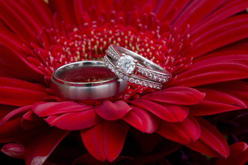 09-rwedding-ring-detail-shot-red-gerber-daisy-melanie-mahonen-photography