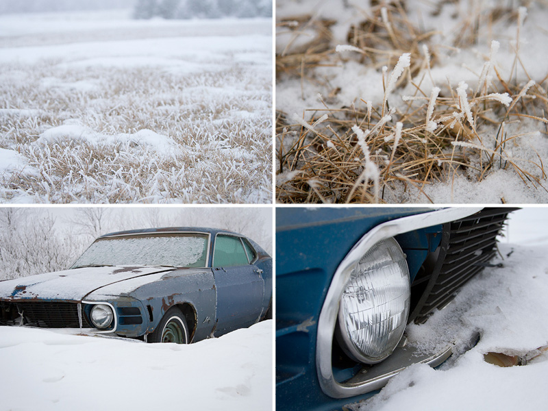 01-north-dakota-frost-melanie mahonen-photography