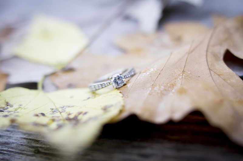 04-fall-engagment-ring-detail-shot-leaves-color-melanie-mahonen-photography