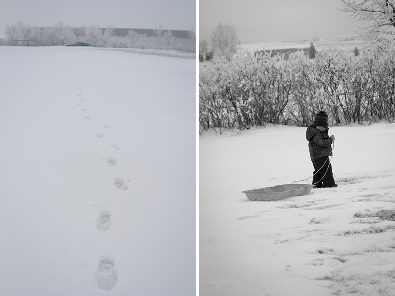 05-north-dakota-winter-snowy-footprints-melanie-mahonen-photography