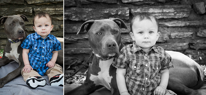 04-lake-como-pavillian-saint-paul-minnesota-family-one-year-old-session-a-boy-and-his-dog-melanie-mahonen-photography