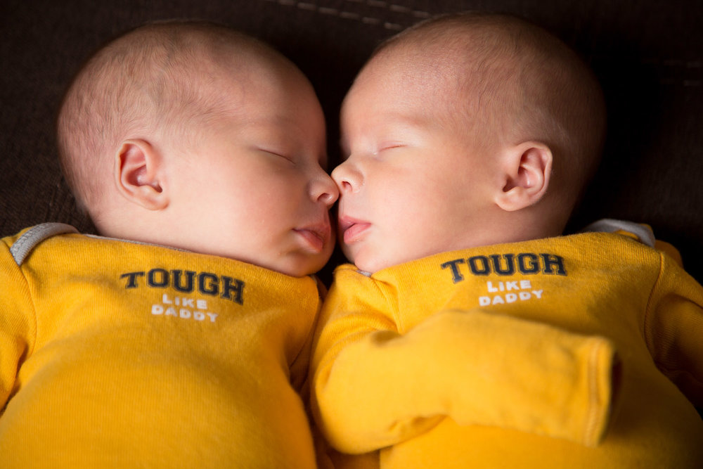 You could tell that they were used to being snuggled up next to each other. As soon as their noses met they were calm.