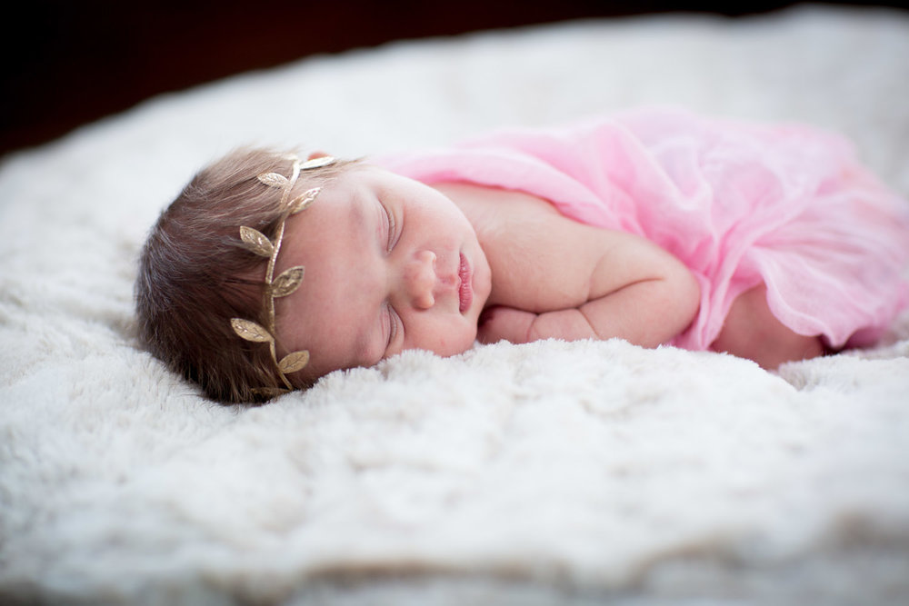 In Home Newborn Photography Golden Valley Minnesota
