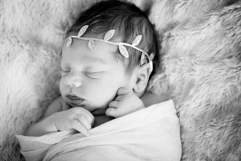In-Home Newborn Photography Black & White Golden Valley Minnesota