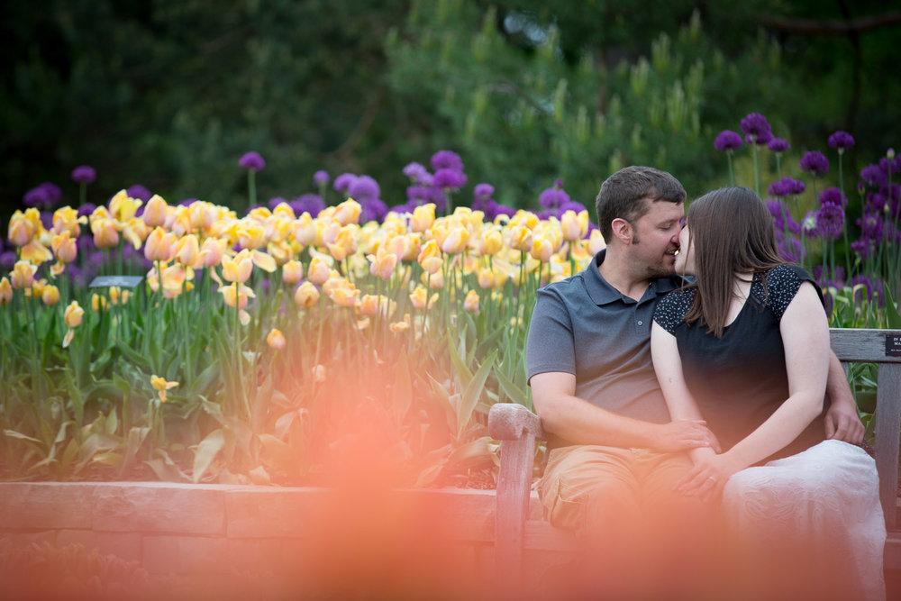 04-minnesota-lanscape-arboretum-spring-engagement-session-tulips-color-casual-portraits-mahonen-photography