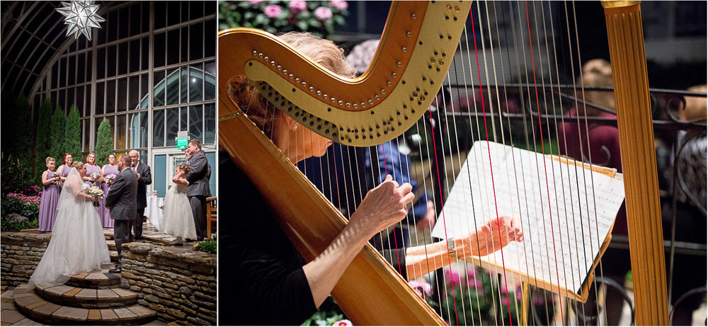 16-live-music-harp-como-conservatory-st-paul-minnesota-sunken-garden-wedding-ceremony-night-mahonen-photography.jpg