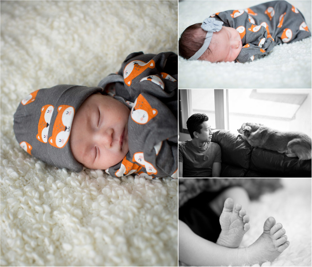 02-in-home-newborn-photographer-baby-girl-gray-fox-mahonen-photography.jpg