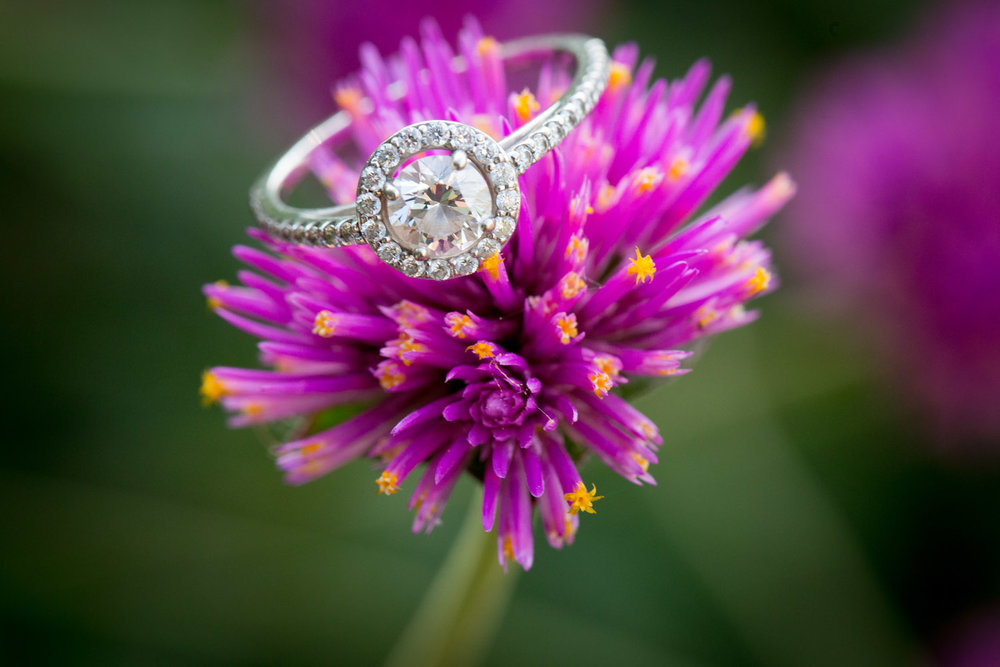 10-minneapolis-engagement-photographer-ring-detail-photo-round-diamond-pink-flower-mahonen-photography.jpg