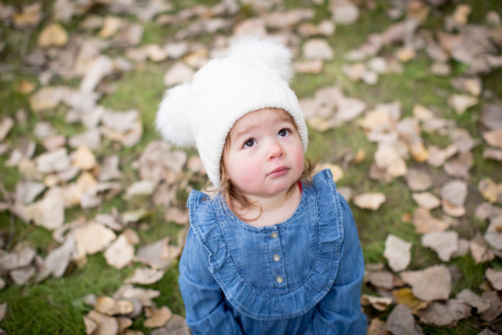 08-maple-grove-arboretum-minnesota-family-fun-photographer-bridge-fall-photo-session-baby-girl-leaves-mahonen-photography.jpg
