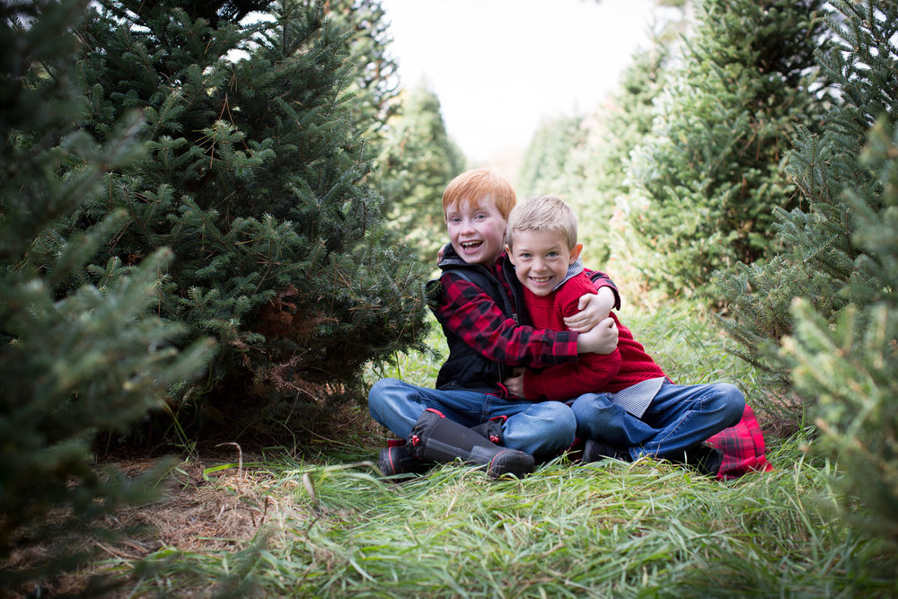 10-hansen-tree-farm-christmas-mini-sessions-minnesota-family-photographer-sweater-puffy-vest-red-plaid-festive-brothers-mahonen-photography.jpg