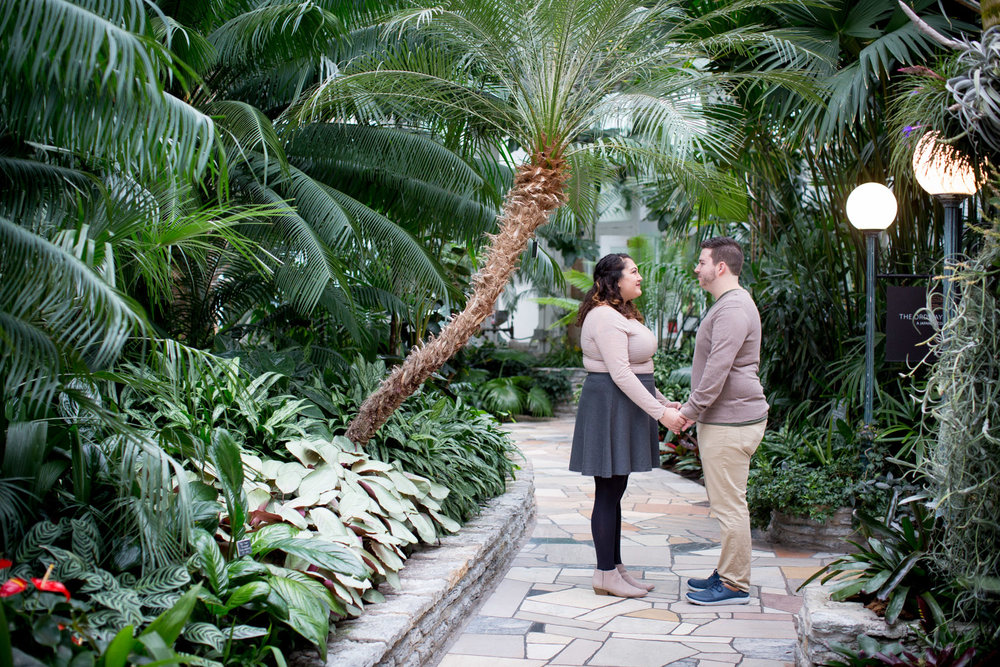 03-como-zoo-conservatory-st-paul-minnesota-engagement-photographer-mahonen-photography.jpg