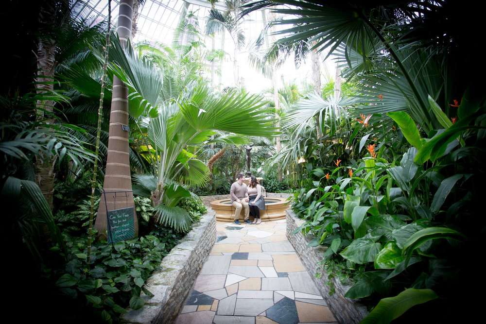 05-como-zoo-conservatory-st-paul-minnesota-engagement-photographer-ferns-fountain-mahonen-photography.jpg