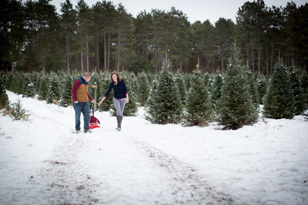 05-hansen-tree-farm-christmas-family-of-three-photographer-mn-mother-son-winter-red-sled-mahonen-photography.jpg