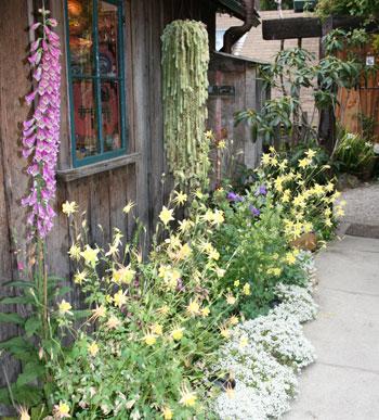 kim-weston-spring-garden.jpg