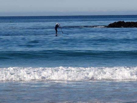 Carmel Beach - Paddle Boarder