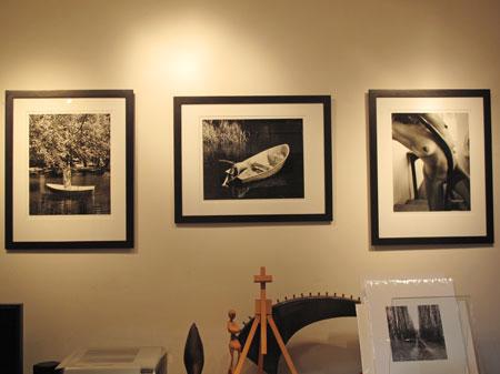 Kim Weston's Wildcat Studio Gallery