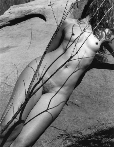 Kim Weston - Lake Powell #2, Nude & Reeds