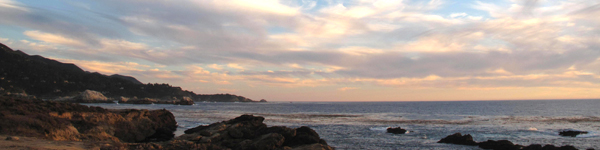 Point Lobos State Park Carmel CA