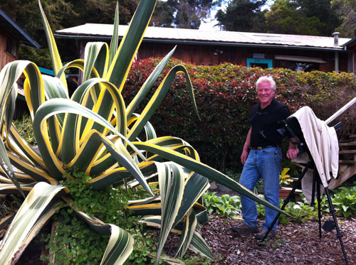 Kim Weston - Photographing an Agave at Wildcat Hill