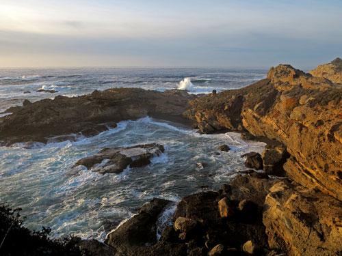 Kim Weston - Point Lobos State Park