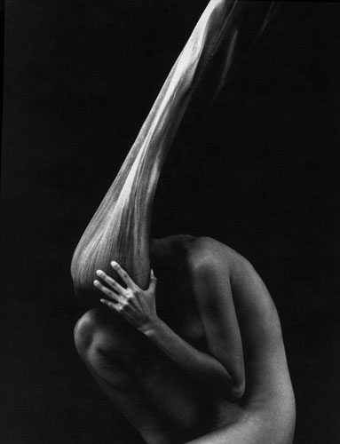 Kim Weston - Nude and Palm