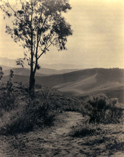 Edward Weston, Los Angeles 1911