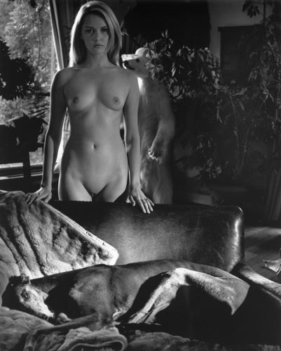 Kim Weston - Nude and Greyhound
