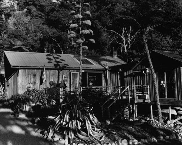 Kim Weston - House on Wildcat Hill