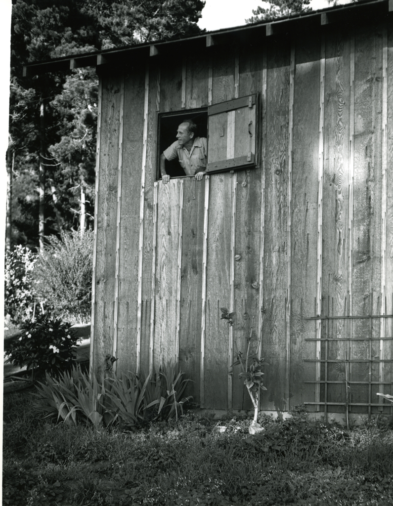 Edward Looking Out Darkroom Window At Wildcat Photog UNKNOWN Weston A Photographers Love Of Life