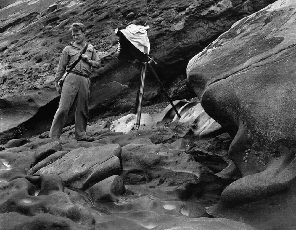 Brett Weston at Point Lobos by Edward Weston