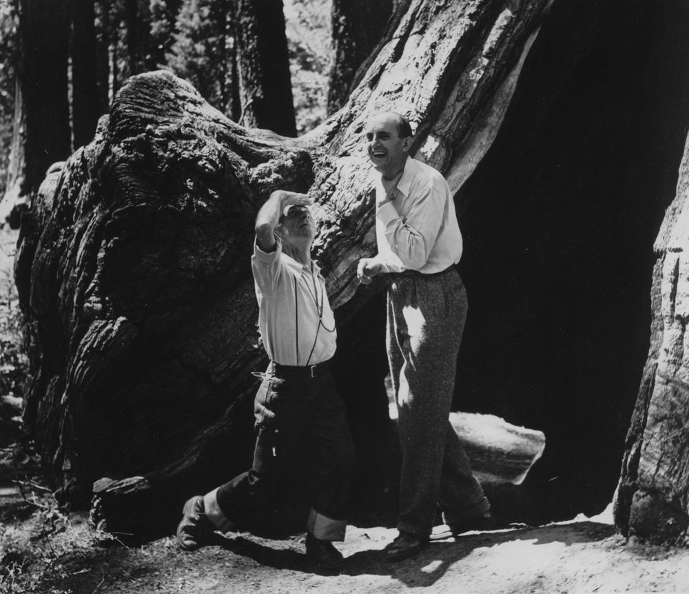Ansel Adams and Edward Weston in Yosemite