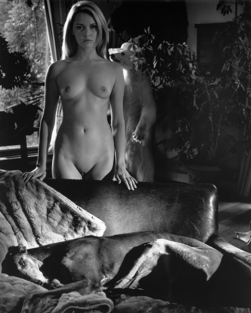 Nude and Greyhound
