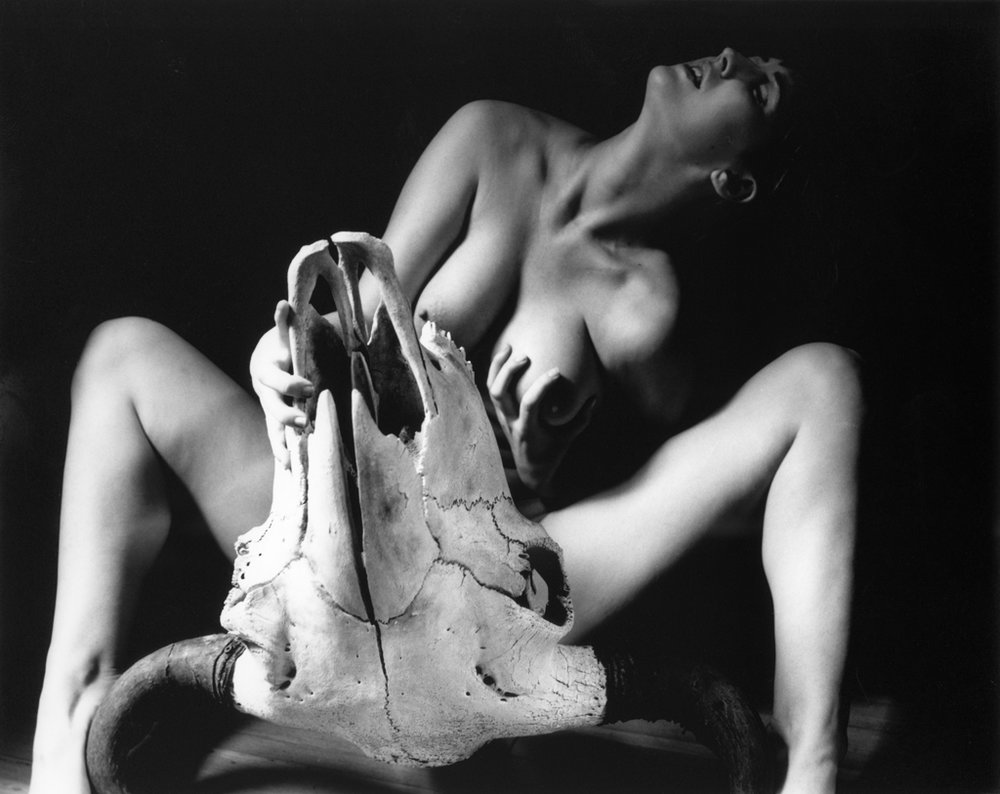 Kim Weston | Picasso Nude