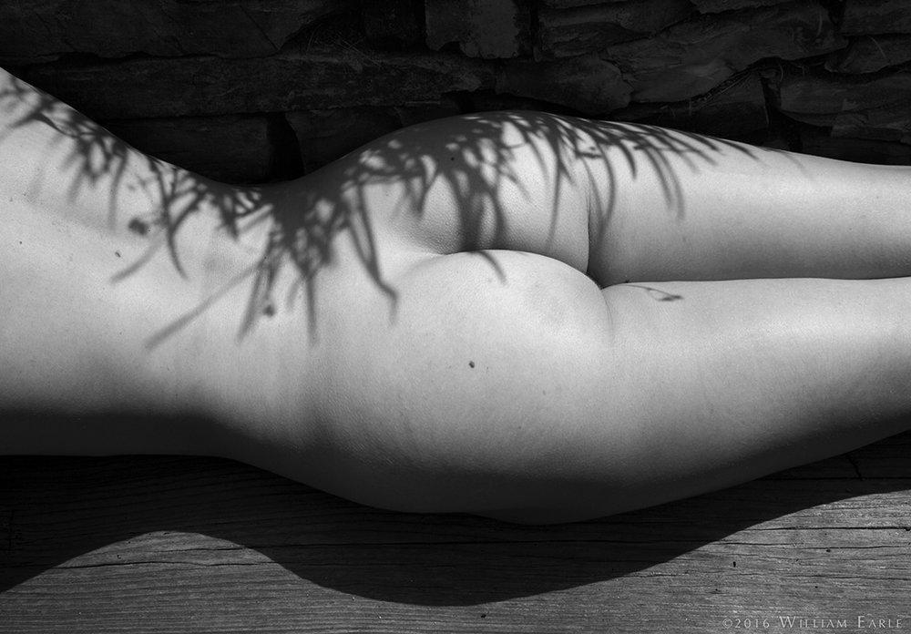 Photo by Bill Earle