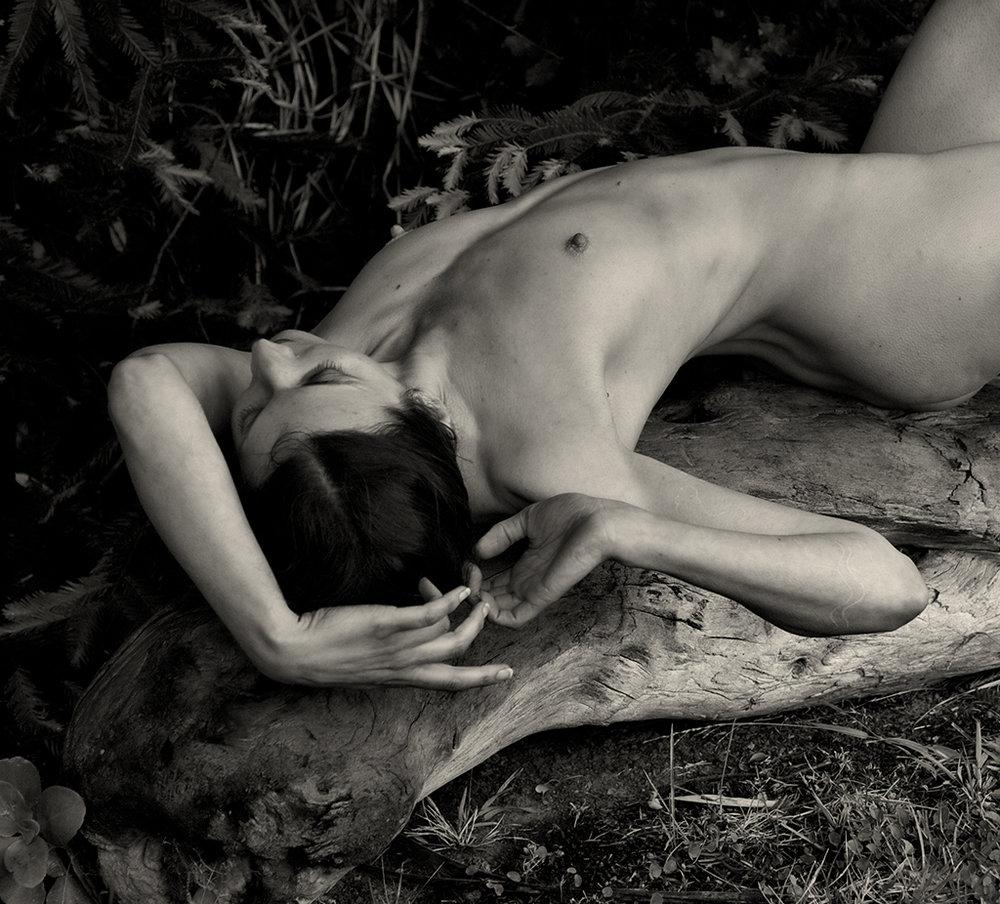Sara © J.Rosenthal.jpg