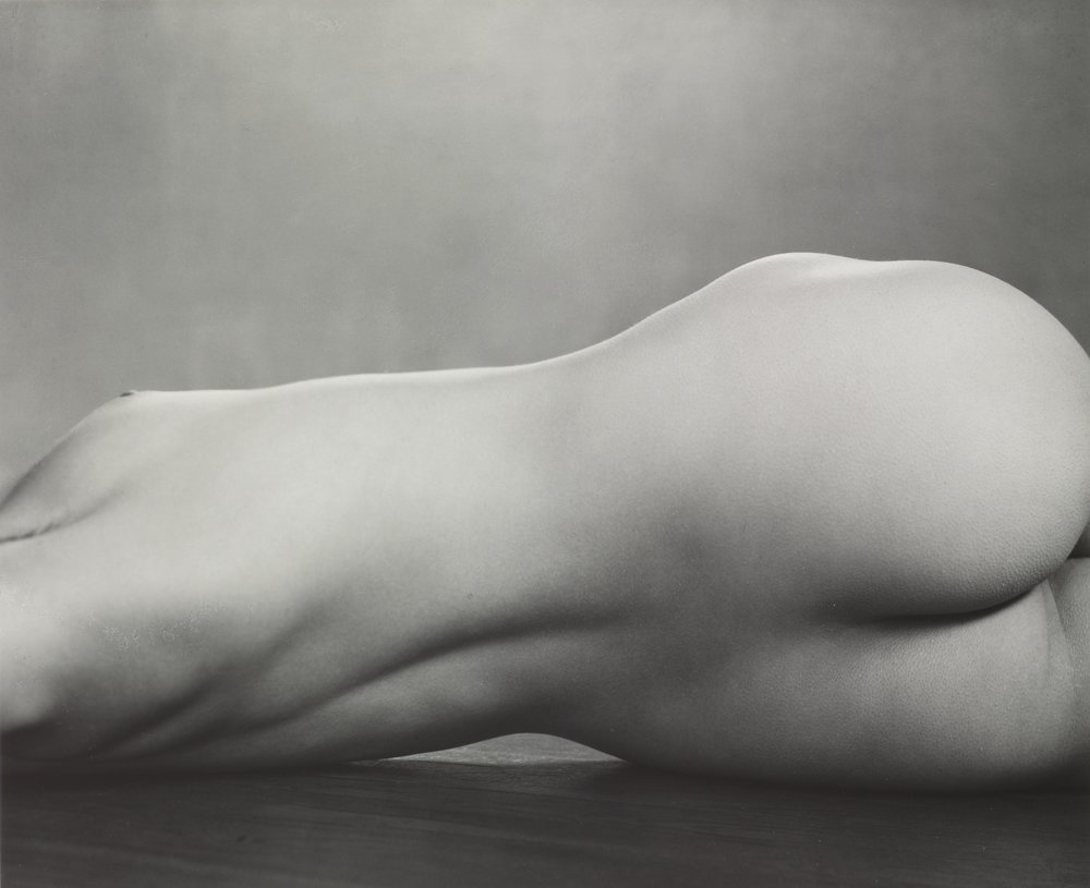 Nude, 1925 (40N) Photograph by Edward Weston  Copyright © 1981 Center for Creative Photography, Arizona Board of Regents