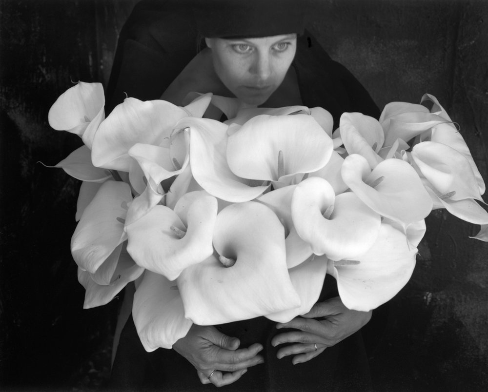 """Calla Lilies"" Open edition silver gelatin print by Kim Weston"