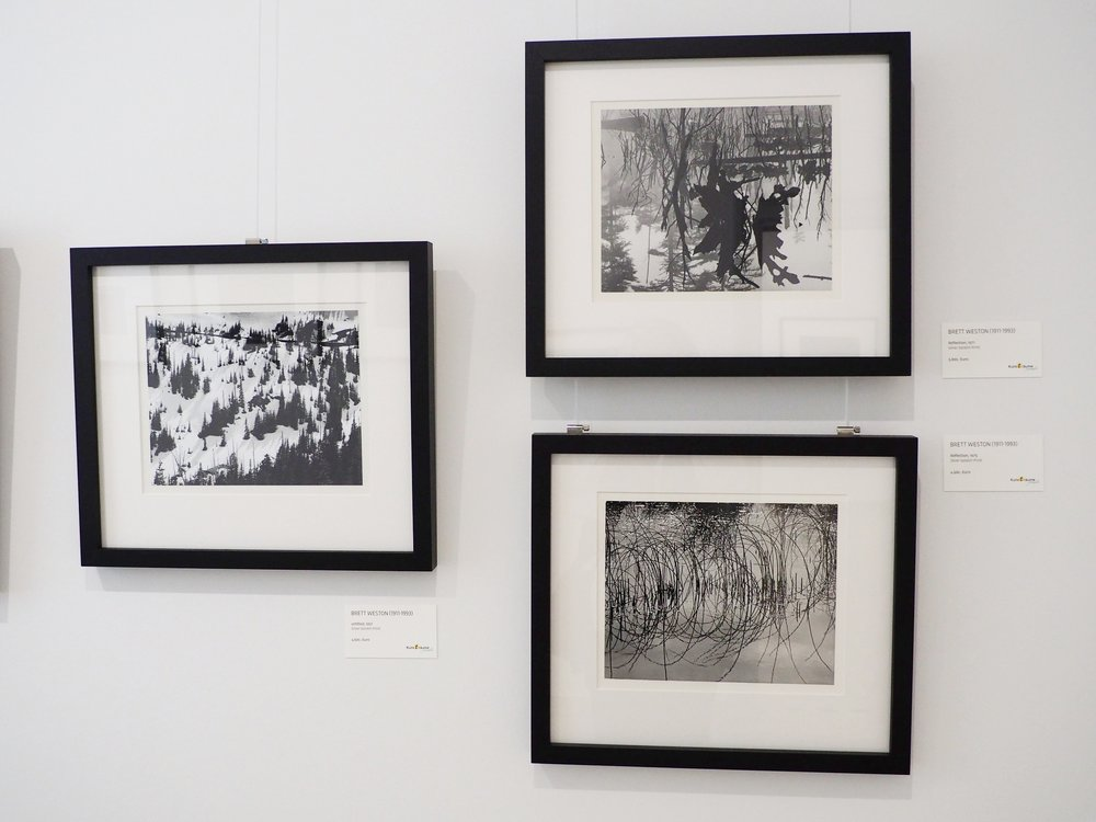 Photographs by Brett Weston on display at the Four Generations of Weston exhibition in Germany, 2017.