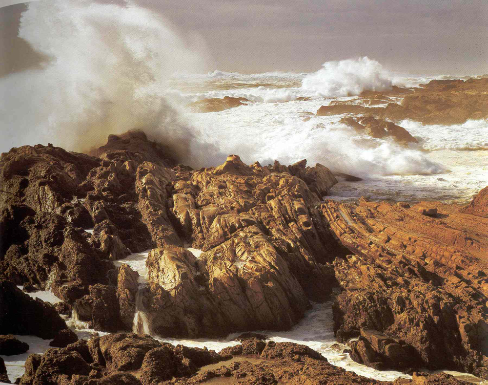 """Storm, Point Lobos"" by Cole Weston, 1977"