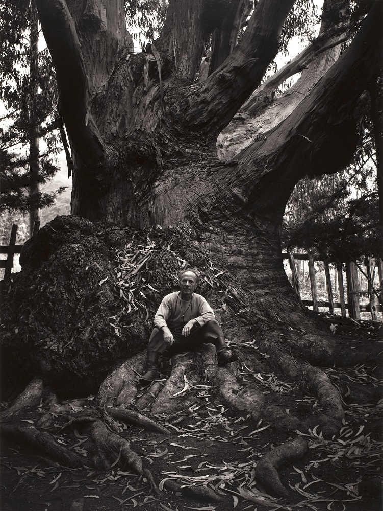 Portrait of Edward Weston by Ansel Adams - Carmel Highlands 1945