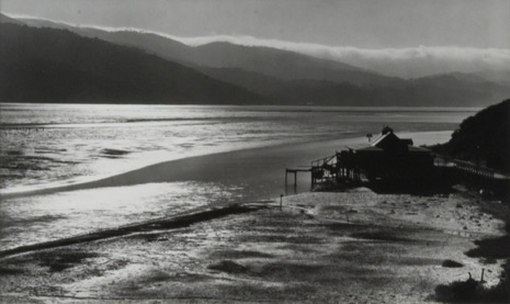 Tamales-Bay-1937.jpg