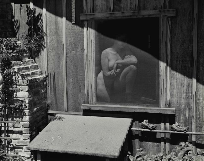 Springtime 1943 , 1943 Photograph by Edward Weston | Collection Center for Creative Photography © 1981 Center for Creative Photography, Arizona Board of Regents