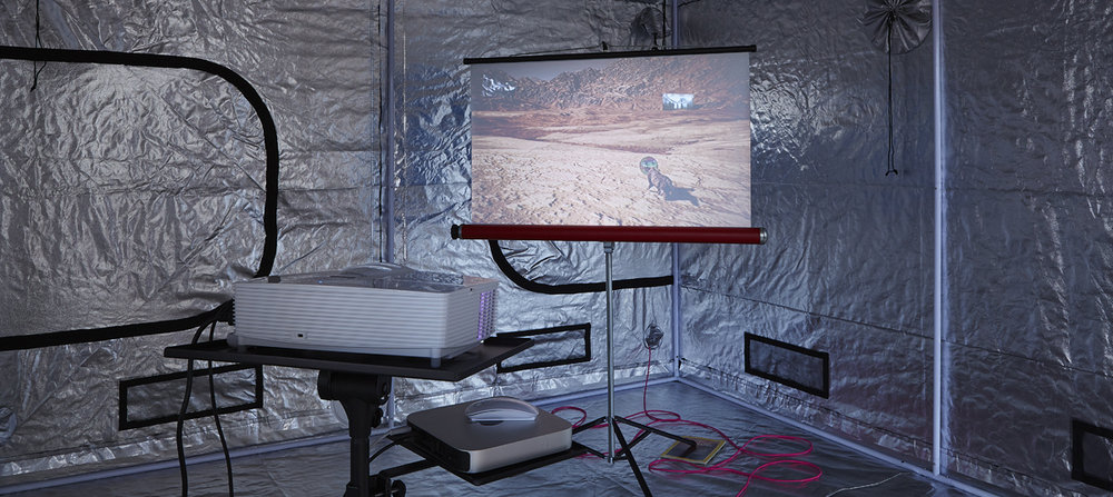 Photoplasma Gondii (ALPHA RELEASE) Video game simulation, vintage projection screen, indoor gardening tent, fabric cable.