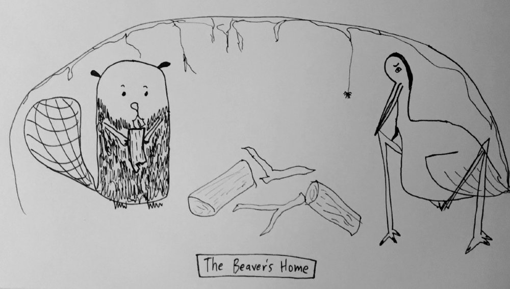 The Beaver's Home