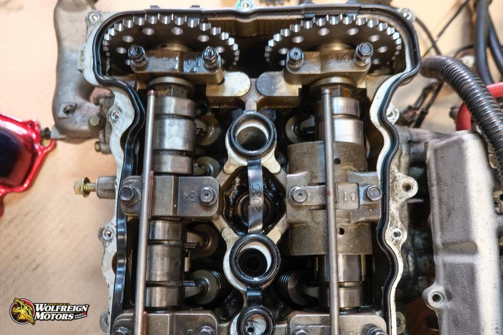 Wolfreignmotorsparts-41.jpg