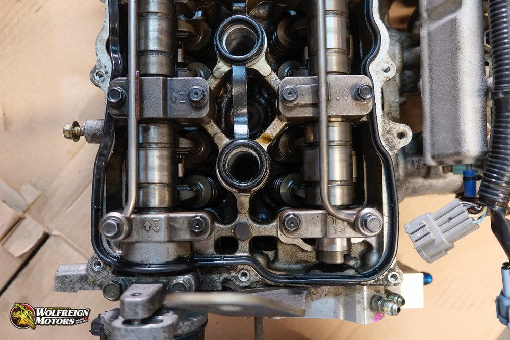 Wolfreignmotorsparts-43.jpg