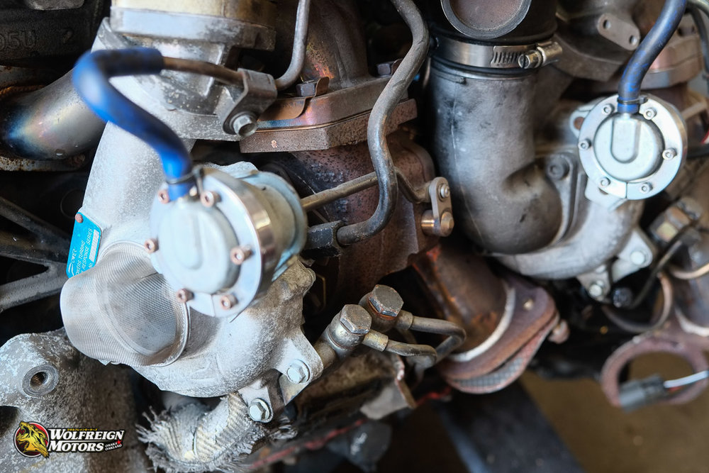 Wolfreignmotorsparts-16-2.jpg