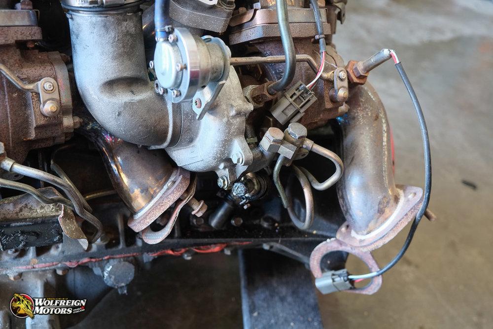 Wolfreignmotorsparts-17-2.jpg