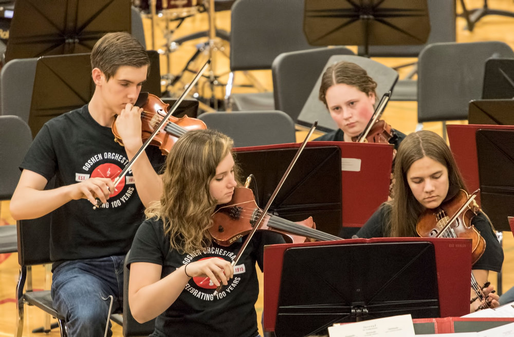 Senior violins at Centennial - 2015-16.jpg