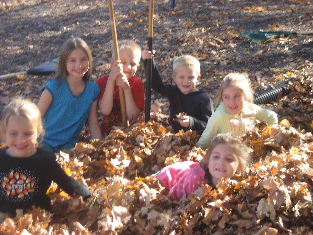 Leaf raking (9).JPG
